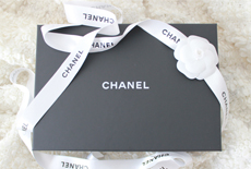 bag in review Chanel WOC wordpress thumb